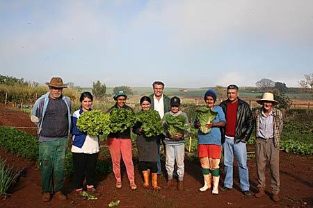 Horta comunitária ajuda na geração de renda em Andirá